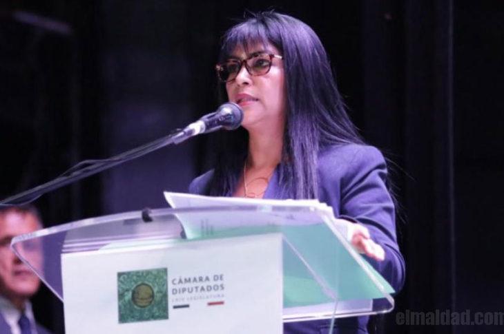 Martina Cázares Yáñez,, diputada de Morena que lee como niña.