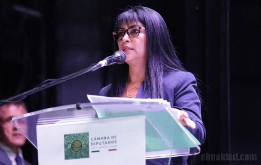 Martina Cázares Yáñez, diputada de Morena que lee como niña.