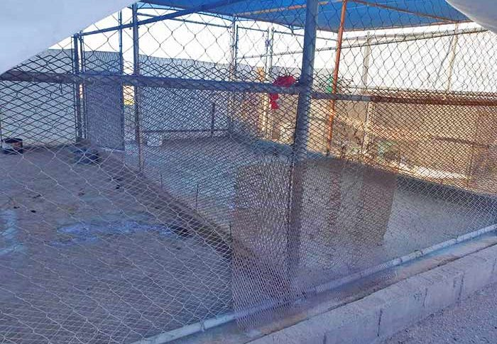 Las jaulas de la perrera de Mexicali quedaron vacías. Foto: Patitas Callejeras A.C.
