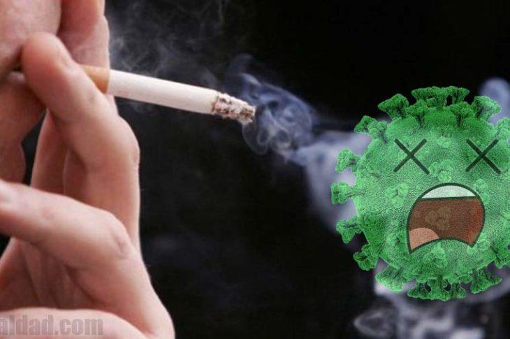Investigarán si tiene un efecto la nicotina contra el coronavirus.